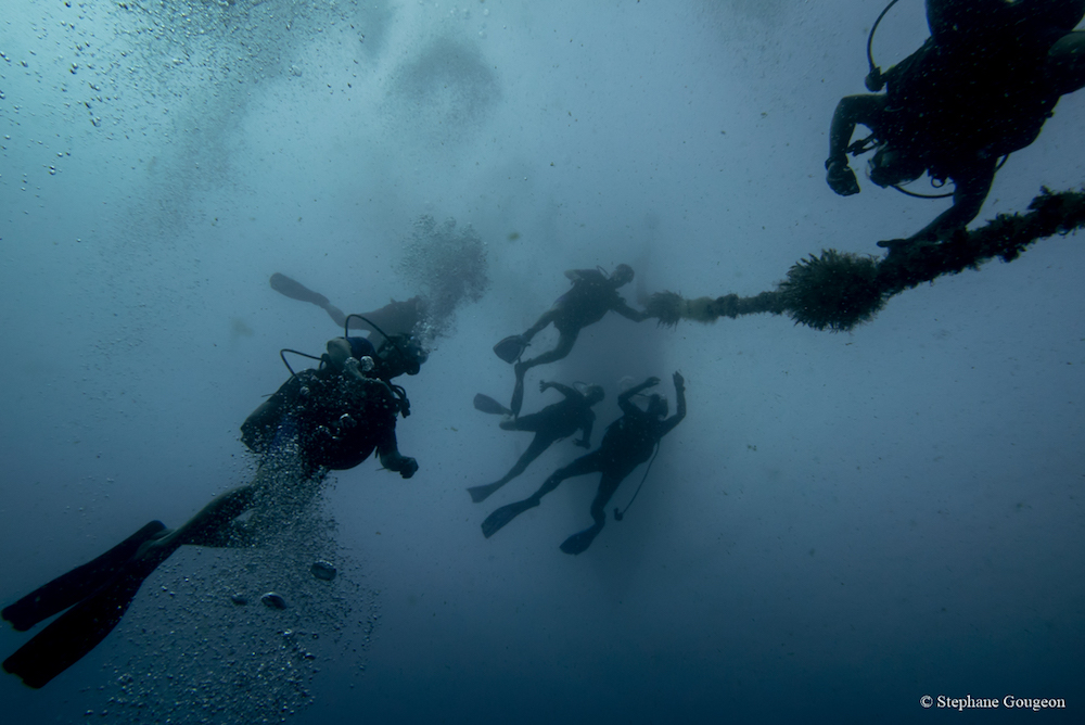 corailclubcaraibes34