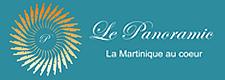 logo_panoramic